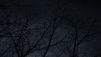 1分で読む現代語訳・徒然草  第27段「御国譲りの節会行はれて」第28段「諒闇の年ばかり」第29段「静かに思へば万に」